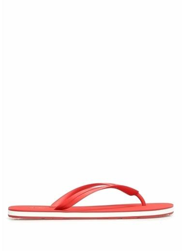 Dolce&Gabbana Terlik Kırmızı